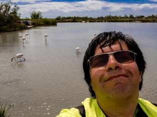 Self portrait with the flamingoes in the background